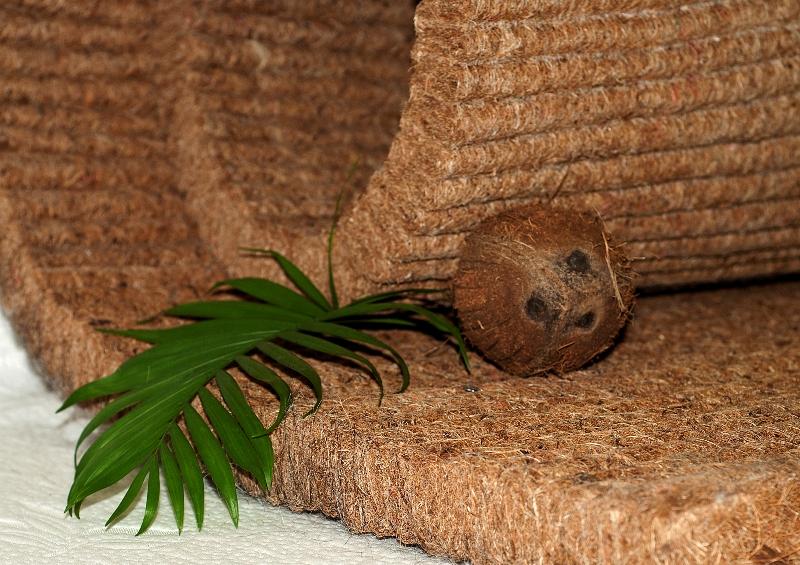 кокосовые матрасы